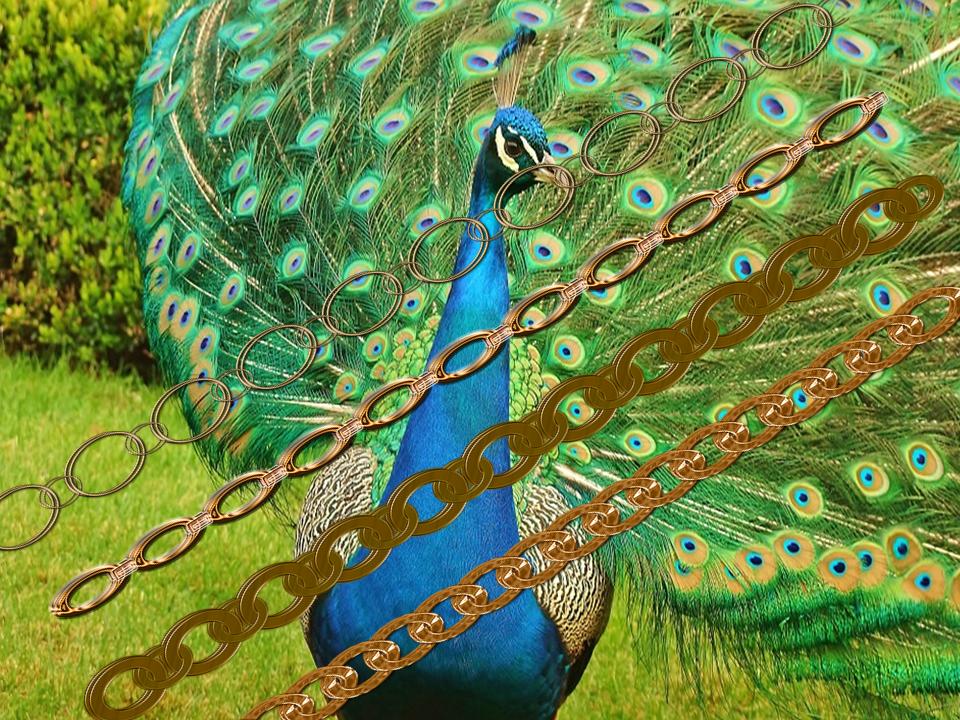 I gioielli come ruota del pavone
